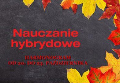 NAUCZANIE HYBRYDOWE